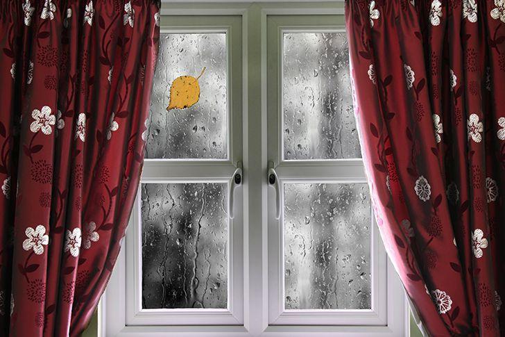 雨の日は中止を考える