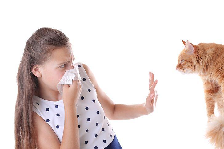 動物アレルギーの有無